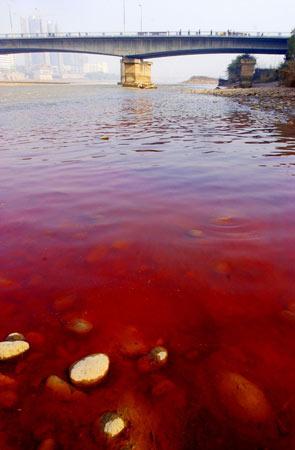 La Chine face aux problèmes de la pollution de l´eau